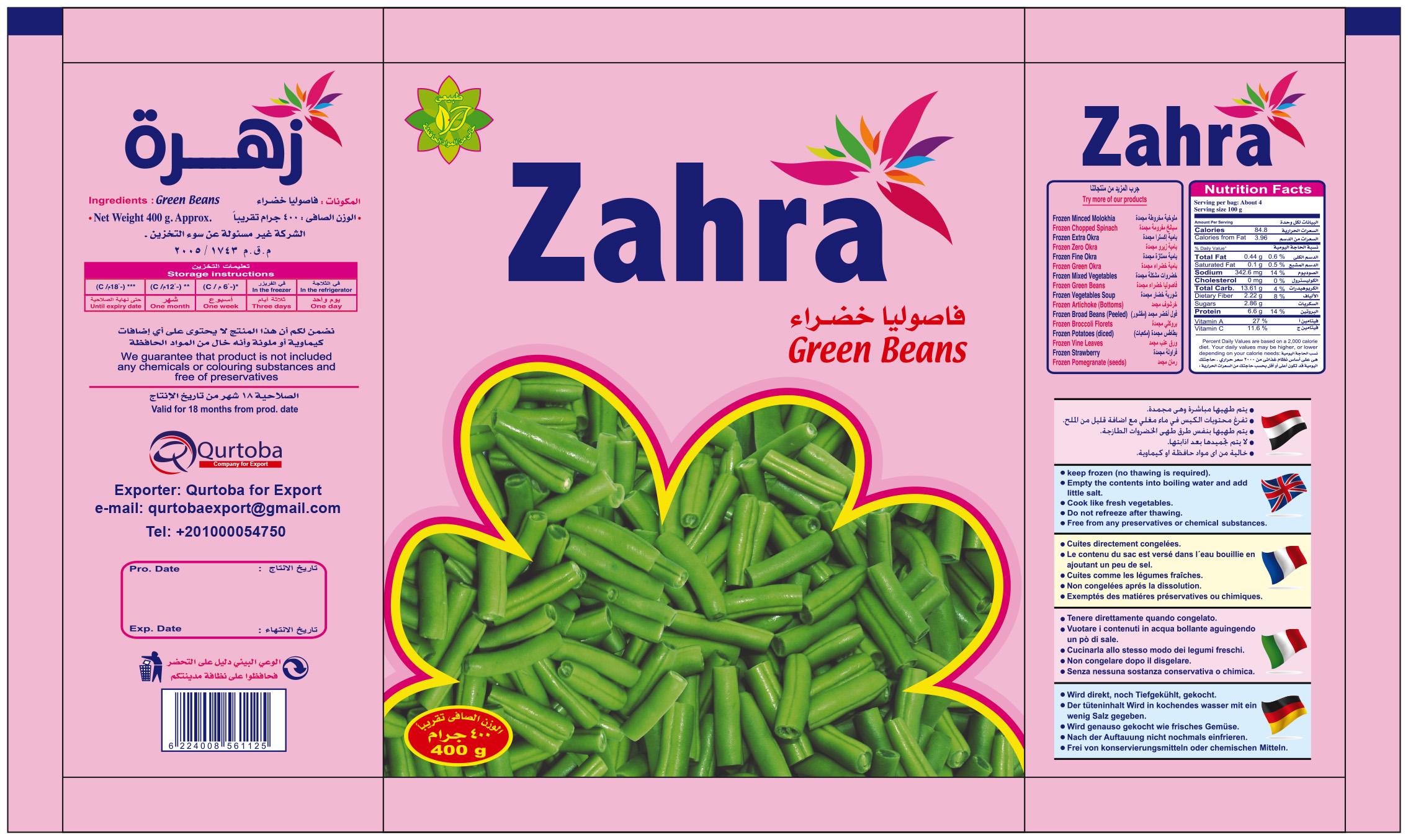 Frozen Zahra